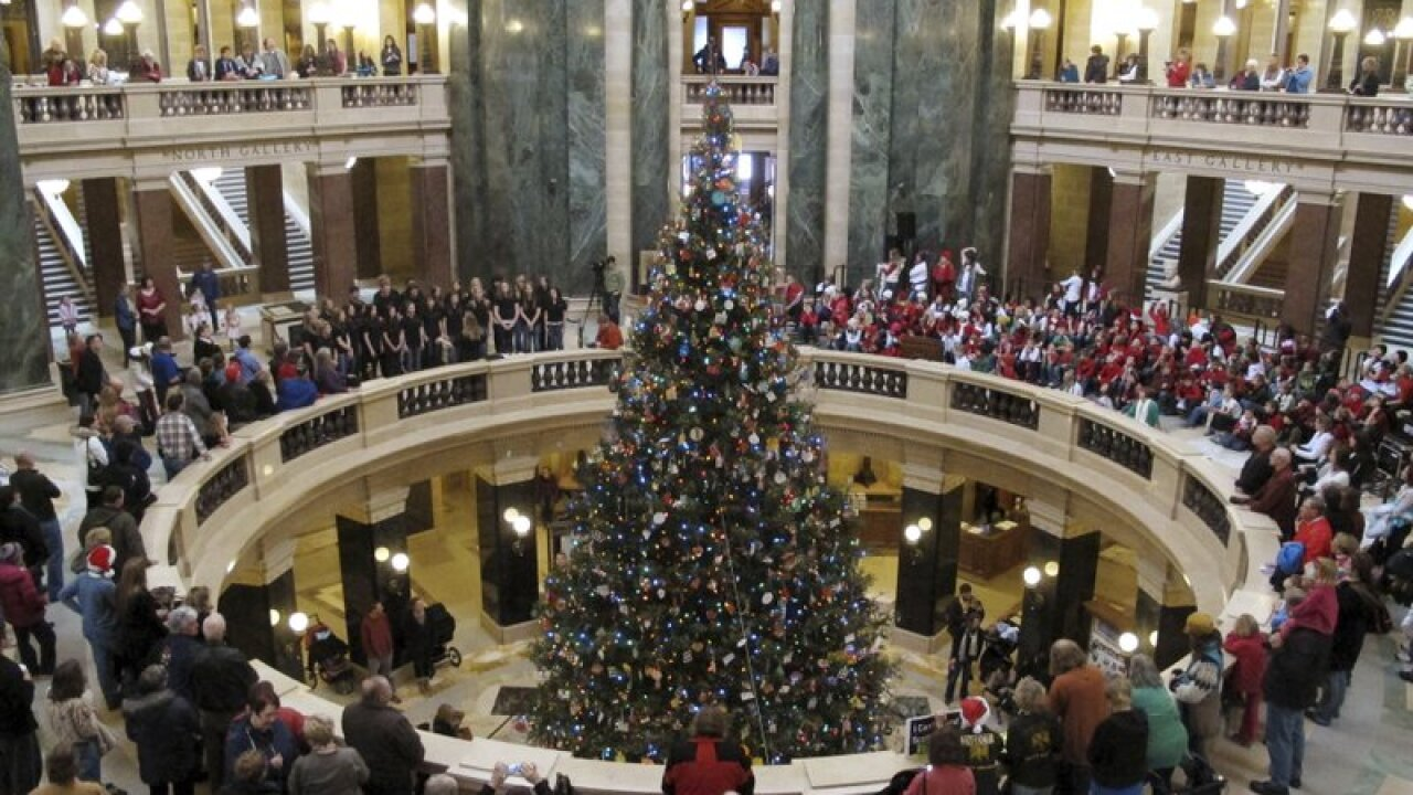xmas tree capitol.jpeg