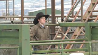 Brummie Boggus rodeo
