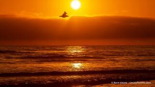 oceanside sunset.jpeg