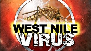 Washoe County health officials confirm West Nile virus death