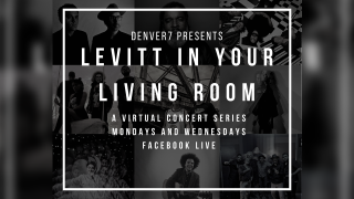 levitt-in-your-living-room.png