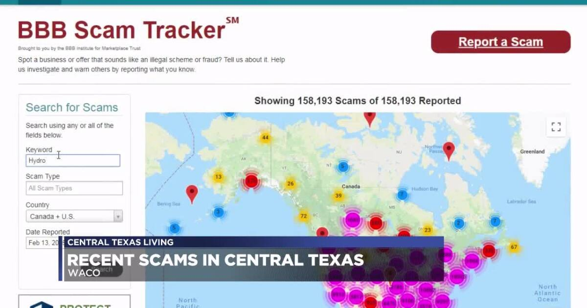 Expert Weighs In On Recent Scams In Ctx