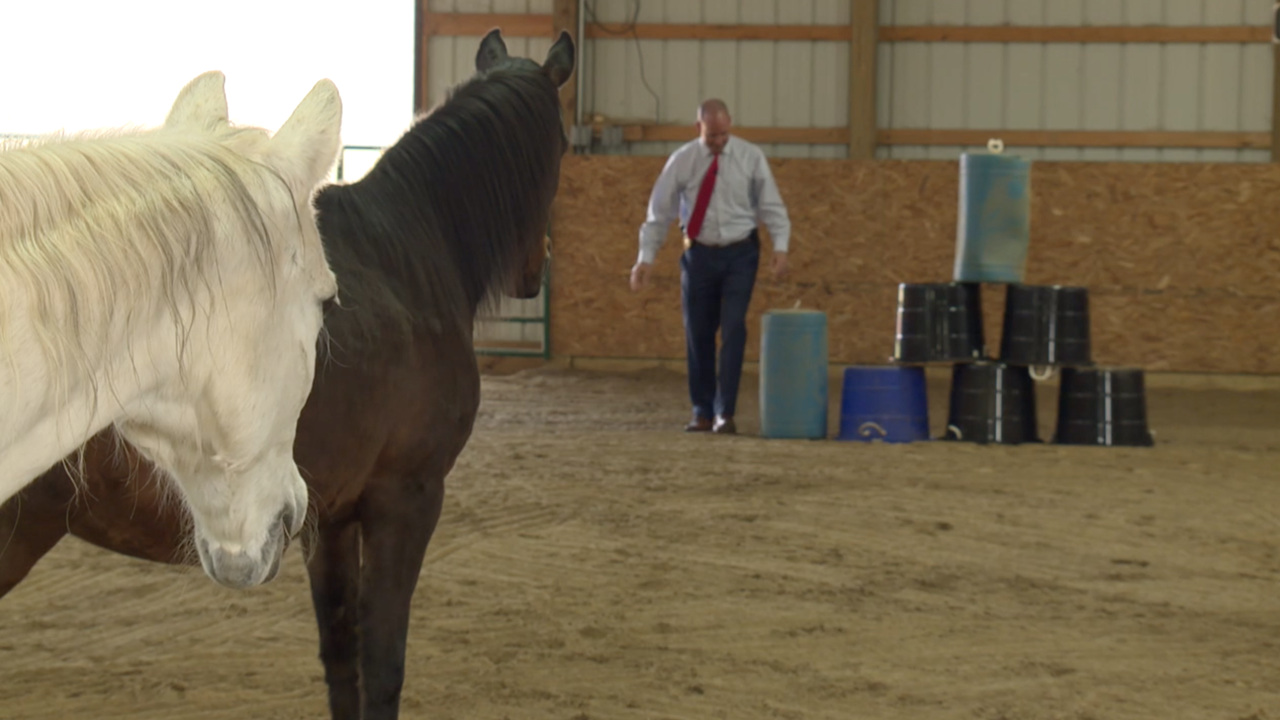 Equine therapy program helping first responders cope with pandemic-related stress, anxiety