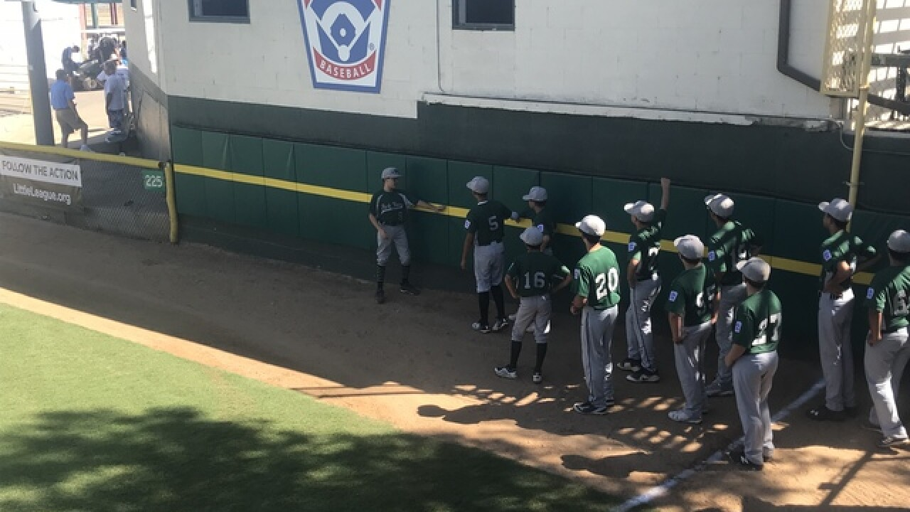 Park View Little League suffers first loss