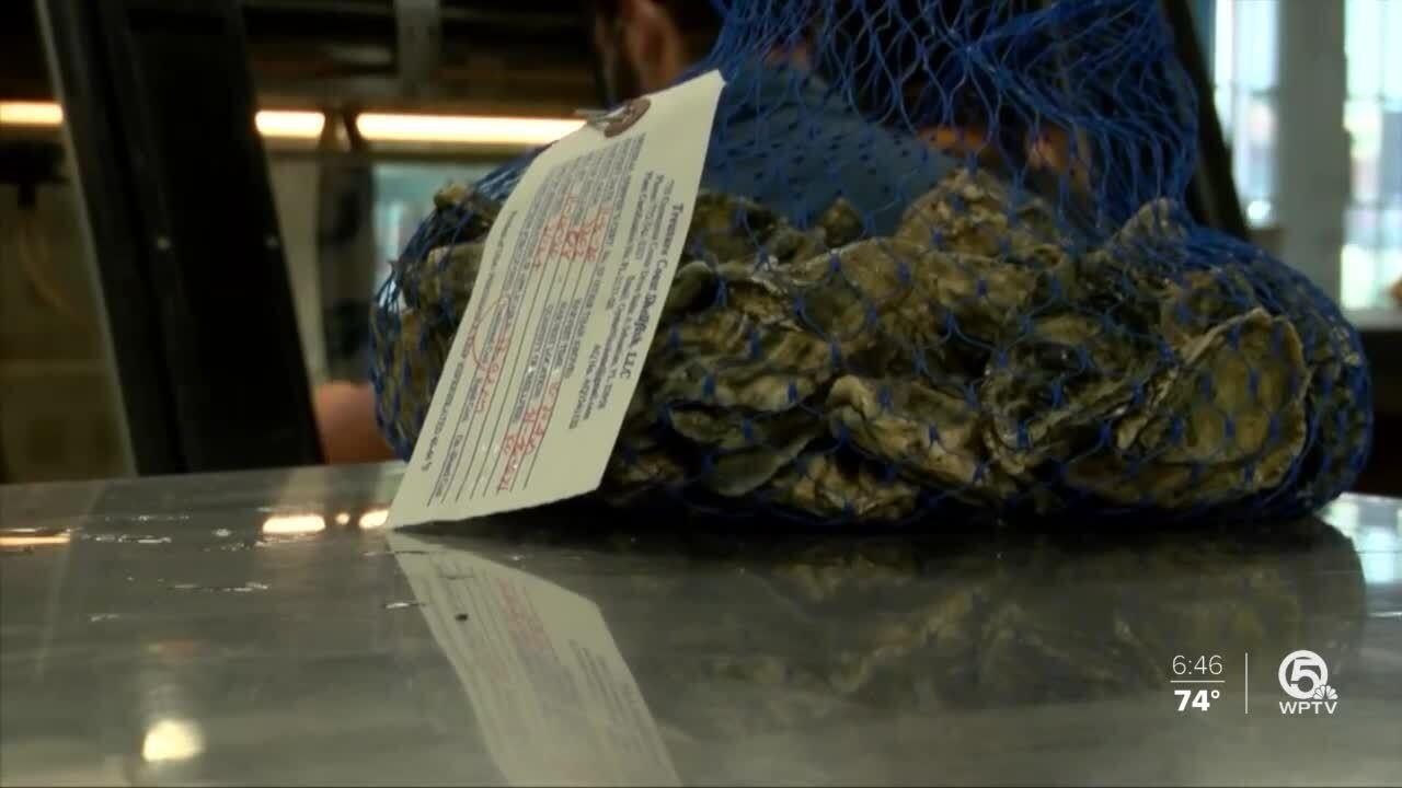 'Sebastian Silvers' from Treasure Coast Shellfish being sold to area restaurants