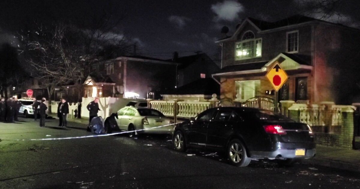 Pregnant woman shot in Queens: police