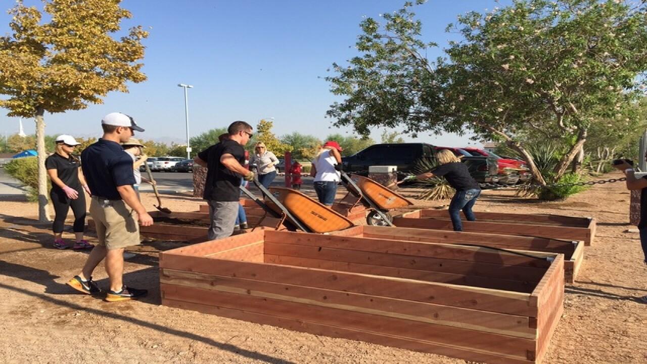 Inspirada installs gardens at Liberty High