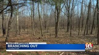 Making A Difference: Reforest The Bluegrass Is Branching Out