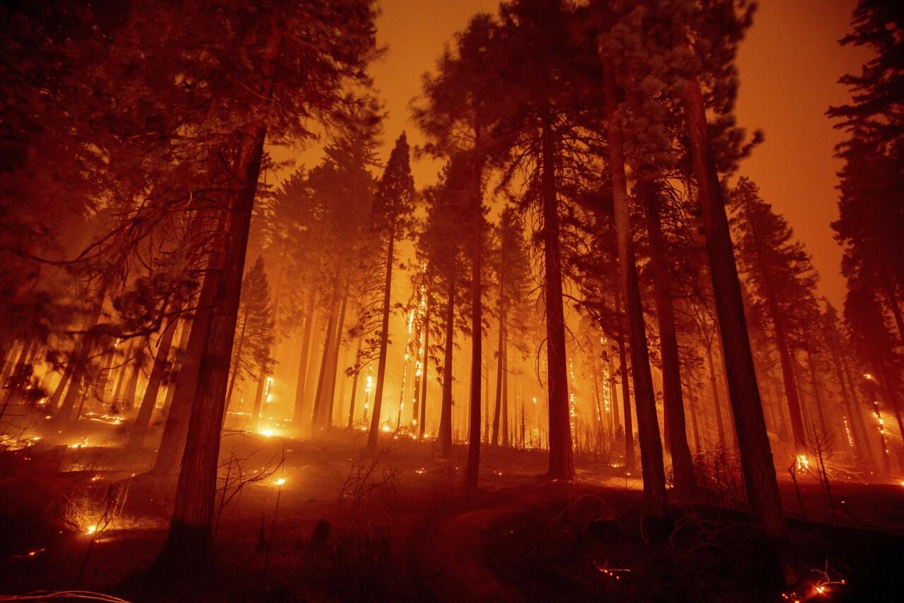 California Western Wildfires