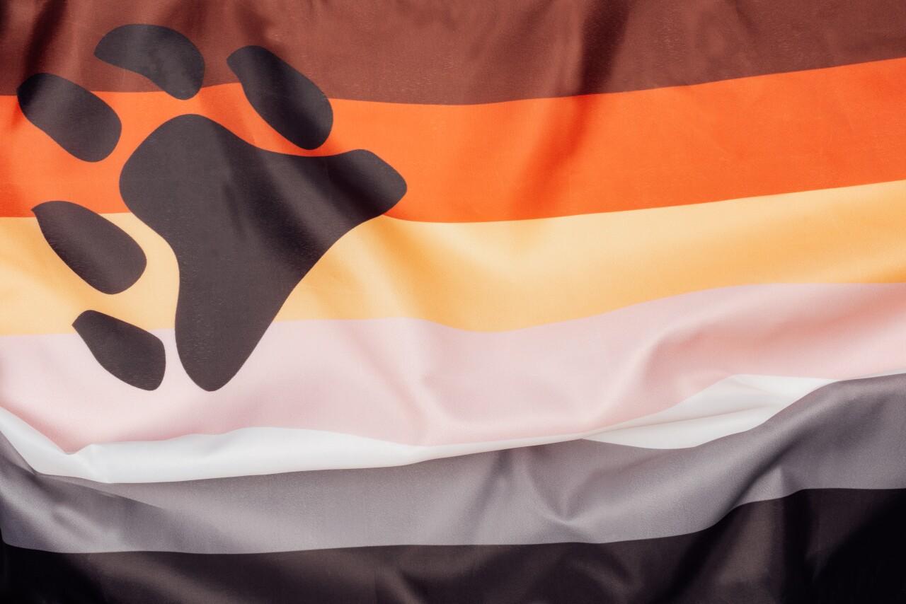 Gay,Pride,Flag,Bear,With,Bear,Paw