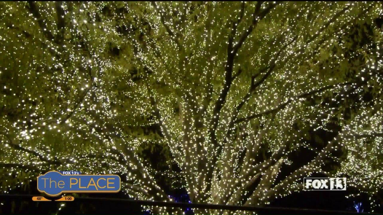4 Must-see holiday lightsdisplays