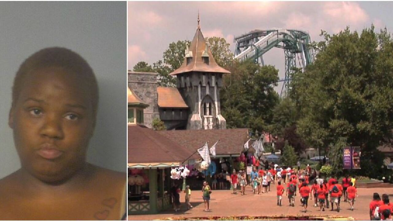 Park visitor charged with indecent exposure after Busch Gardens incident