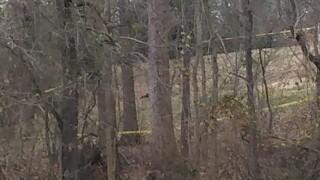 Unidentified body found behind church in Clarksville
