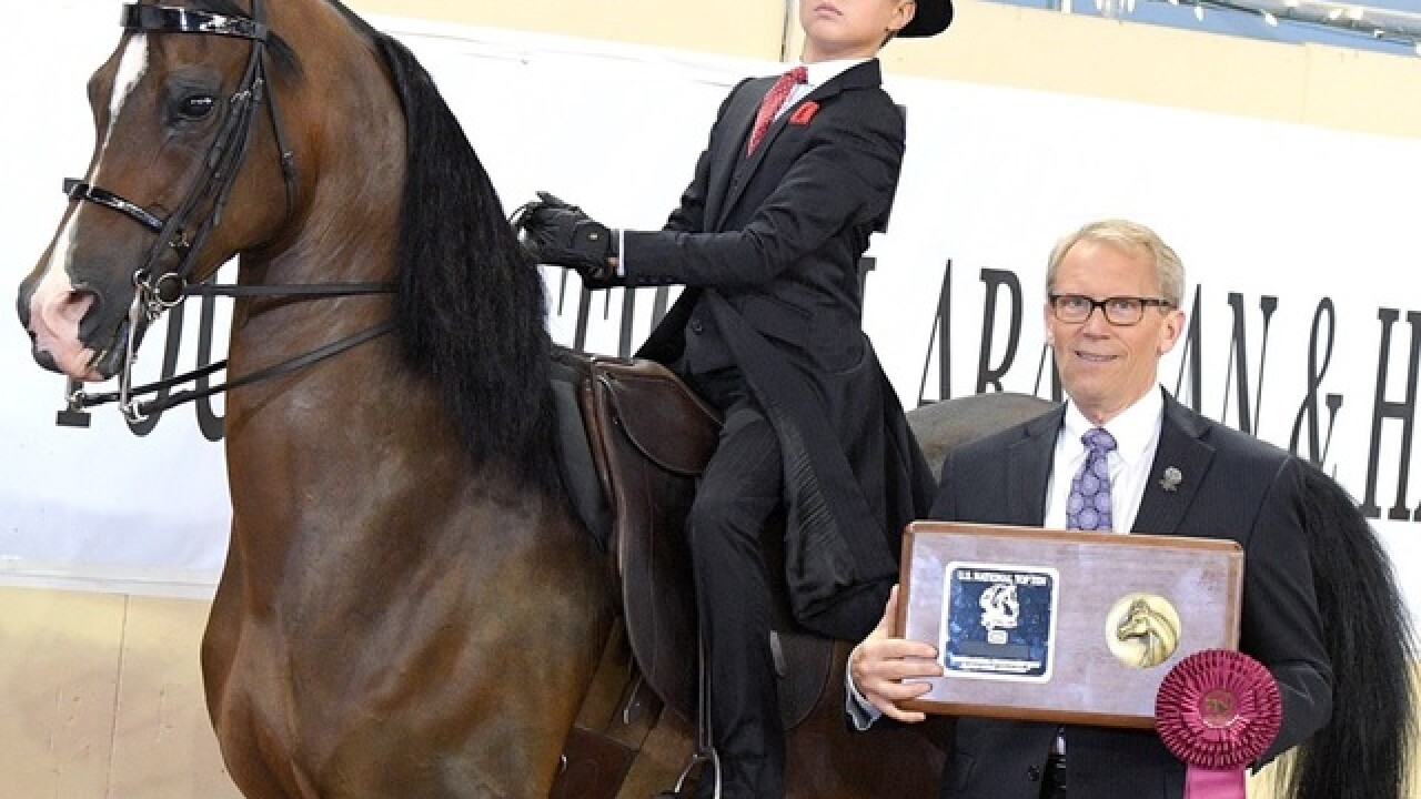 Fort Thomas 11-year-old brings home 6th-place finish in national horse show competition