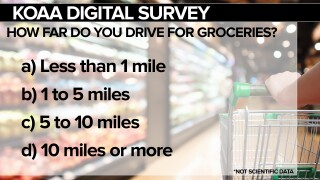 Grocery Survey Picture
