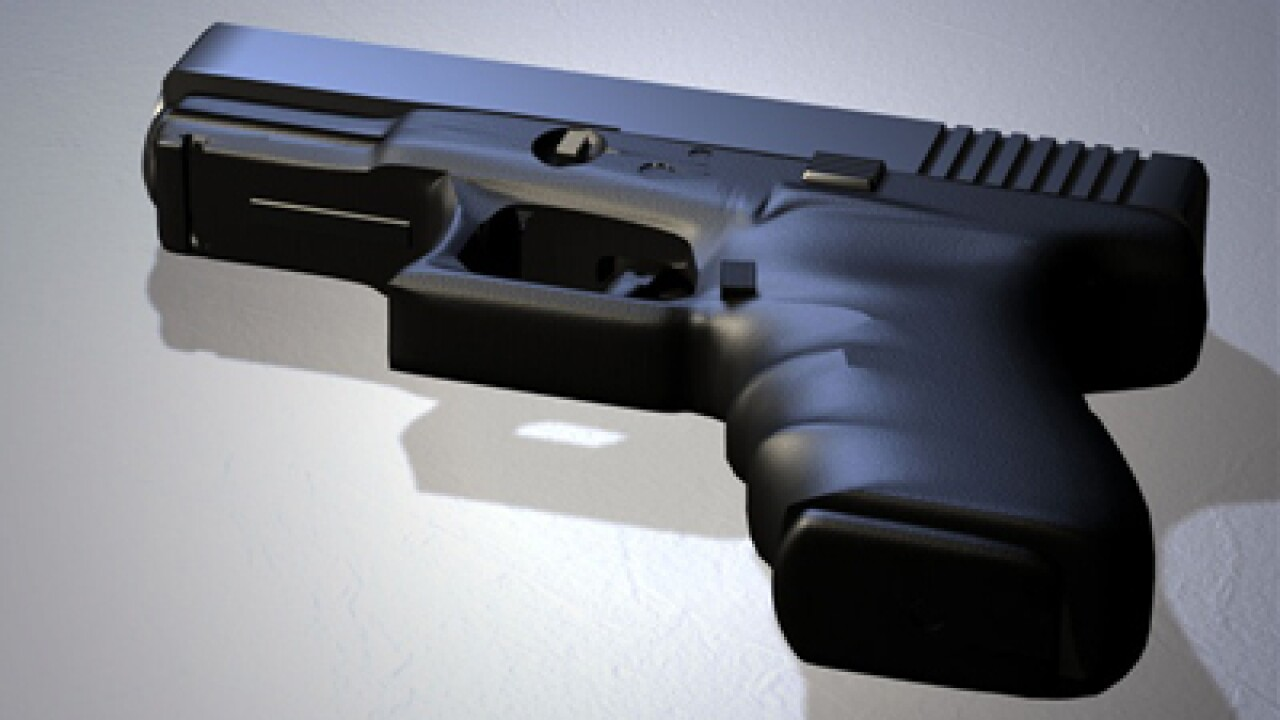 Commenters debate guns, 'what if'