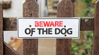 Woman attacked by dogs in Muskogee County
