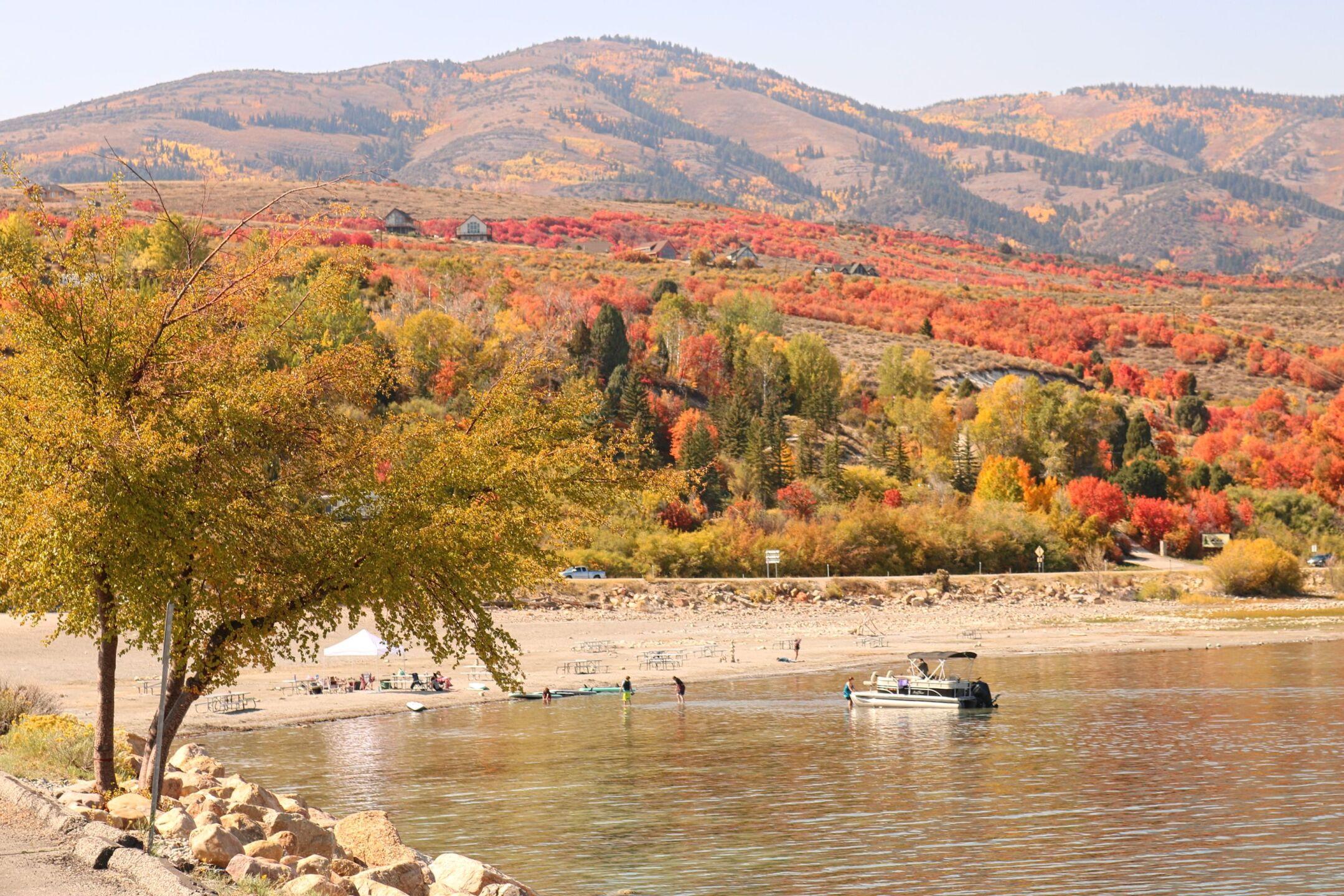 Carol Dyer Bear Lake valley (6).jpg