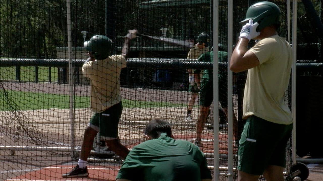 USF Baseball Practice.png
