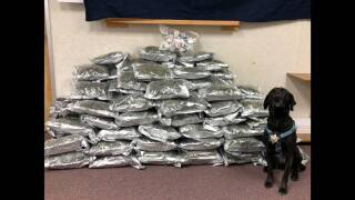 The K9 officer that detected the massive amount of pot in the car sits proudly with his find. Courtesy: Elmore County Sheriff's Office.
