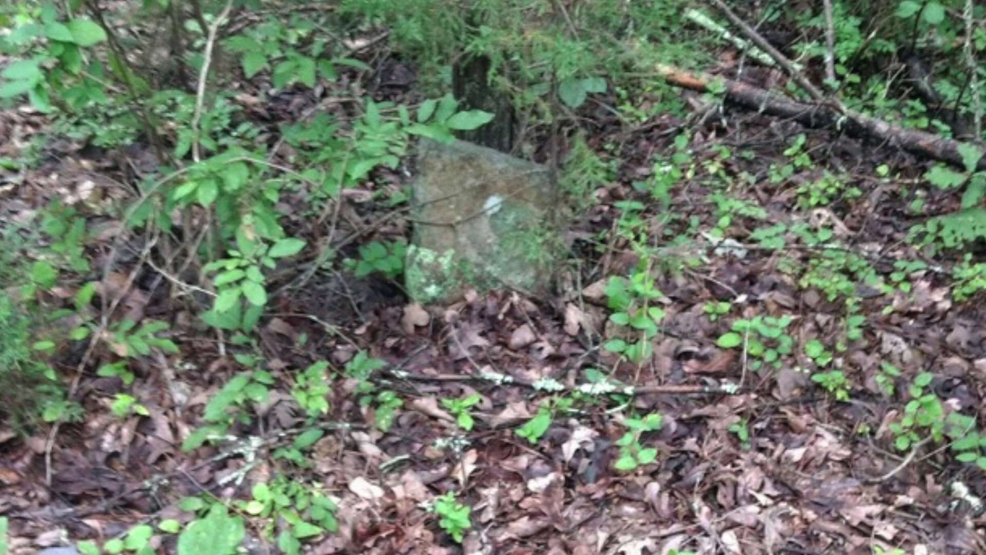 Photos: Burial site, historic school could impact Green Ridge Landfillplans