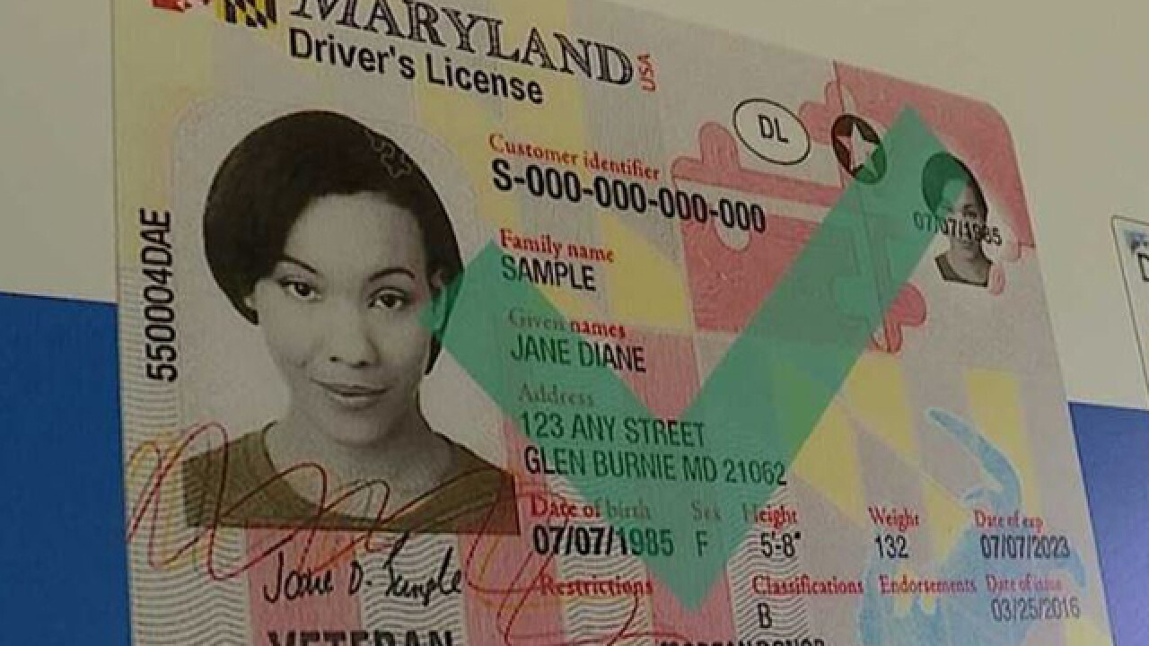 new maryland drivers license picture