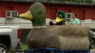 duck fest.JPG