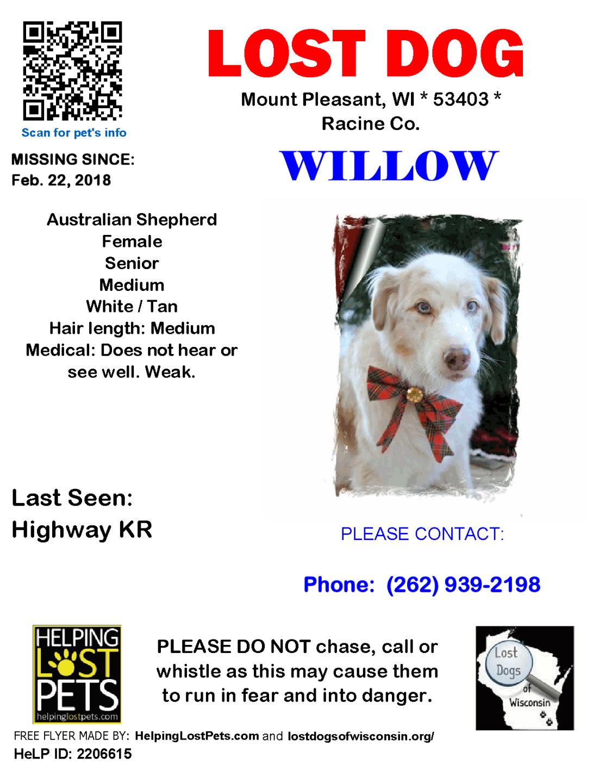 022218 Willow Aus Shepherd Senior deaf and poor vision and generally weak.png