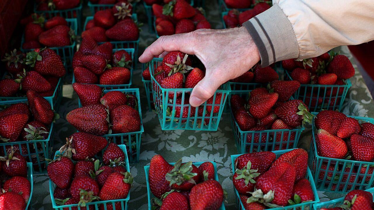 Broad Federal Farm Bill With Implications Across US Food Spectrum Debated In Washington