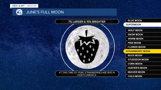 Full Moon Template.png