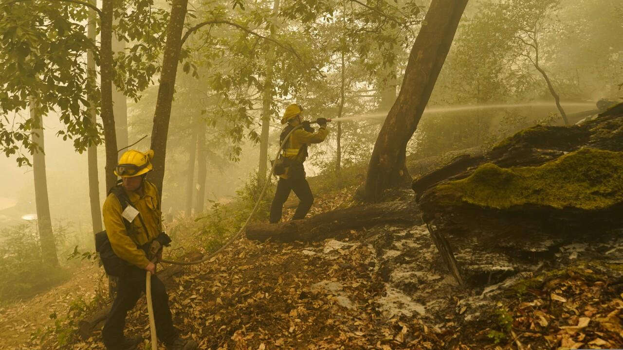 California Wildfire Efforts