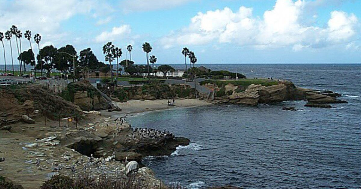 Possible sighting of 2 sharks reported off La Jolla Cove