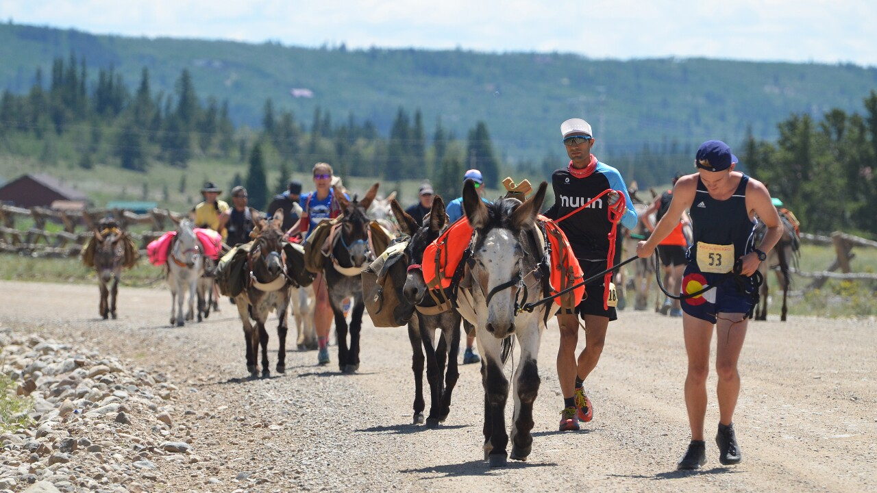 An ass in gear: Burro racers descend on Fairplay for the growing sport's world championship