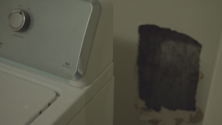 mold-in-home.png