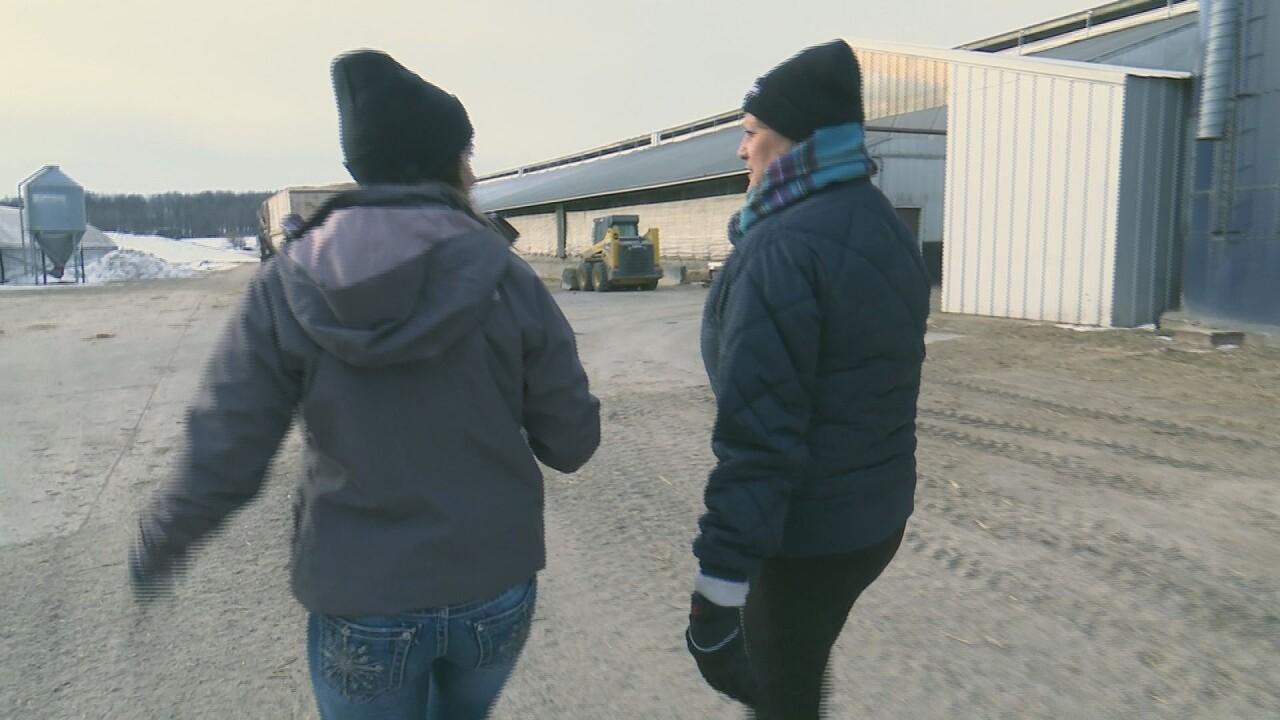 Farming Mentor Program 3