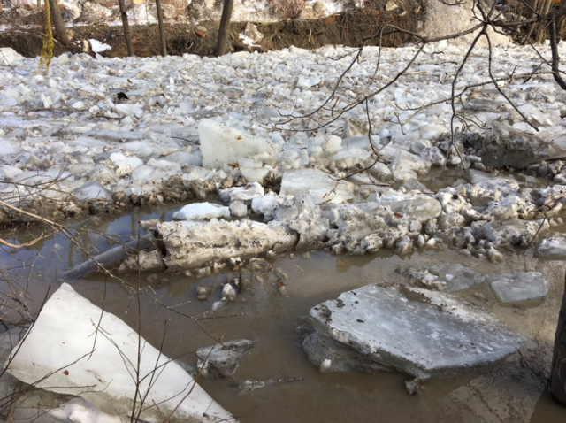 GALLERY: Ice jam flooding in Silver Creek