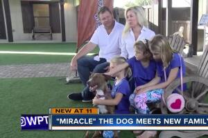 'Miracle' dog adopted, meets his new family!