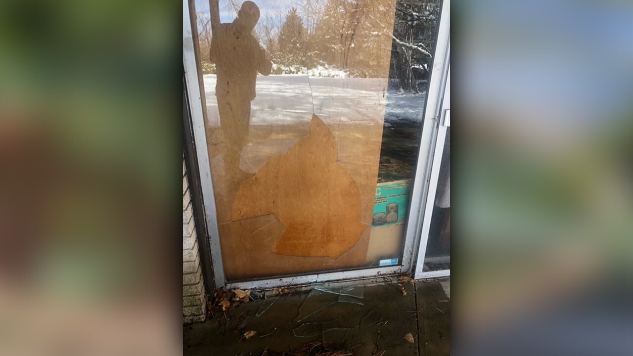 Cougar in Millcreek home