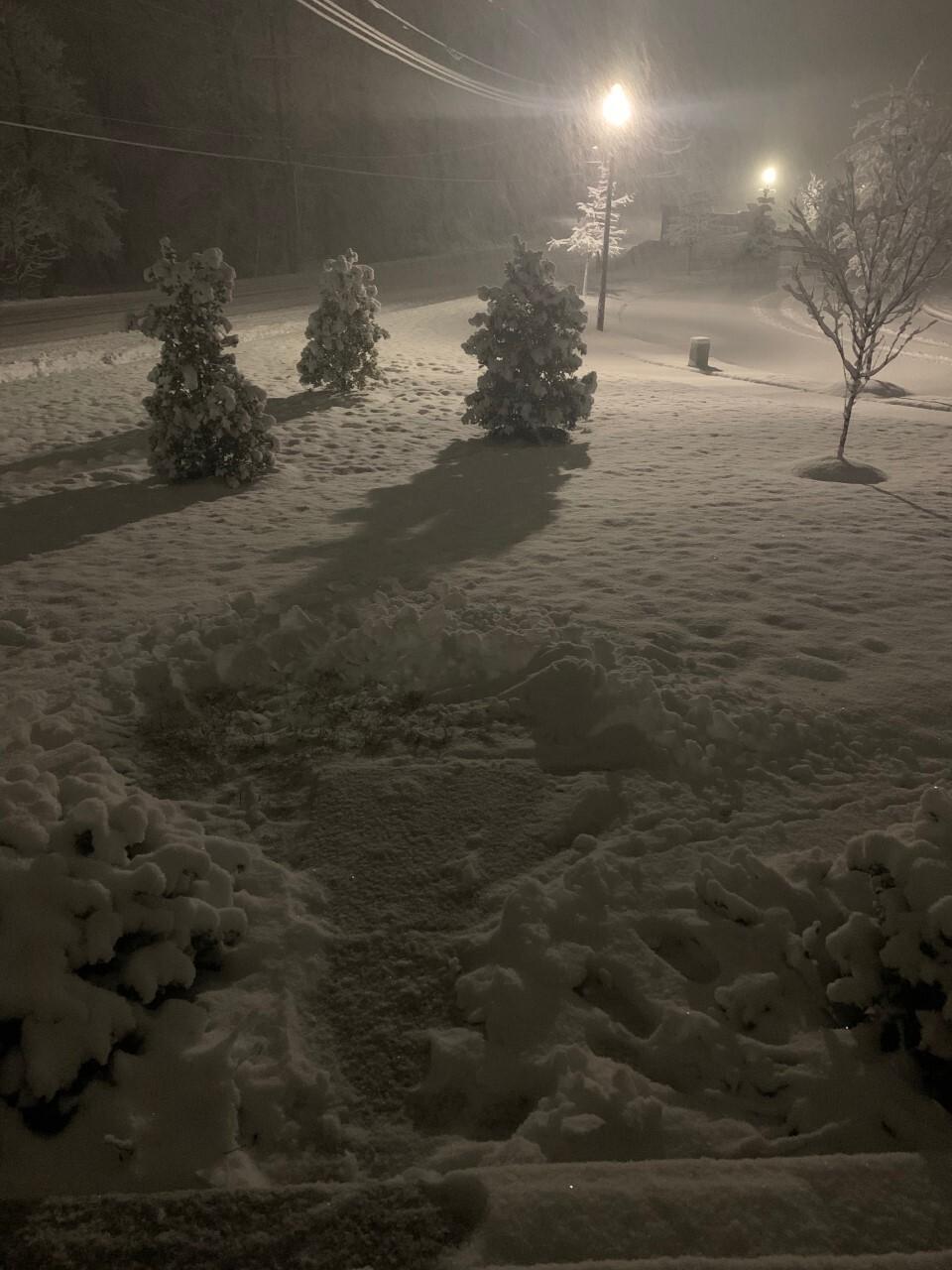 reisterstown snow.jpg