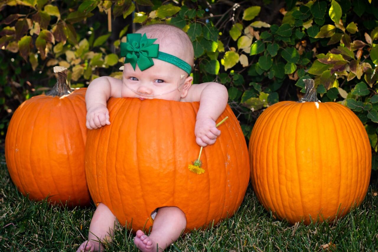 emma leiting pumpkin.jpg