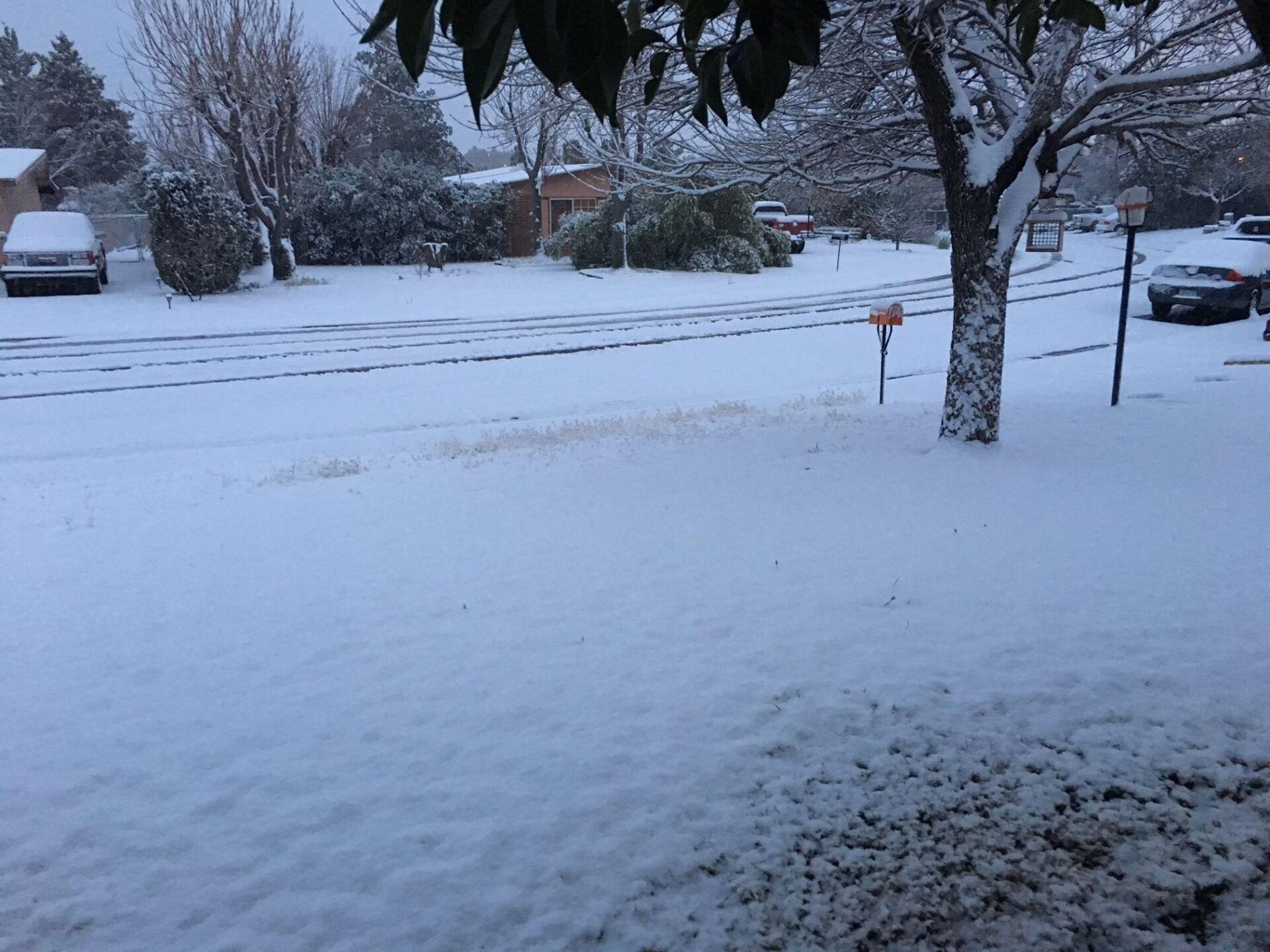 Snow in Rio Rico (5).jpg