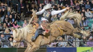 Saddle Bronc Lefty.JPG