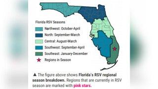 Florida-RSV-Seasons-FLORIDA-DEPARTMENT-OF-HEALTH.jpg