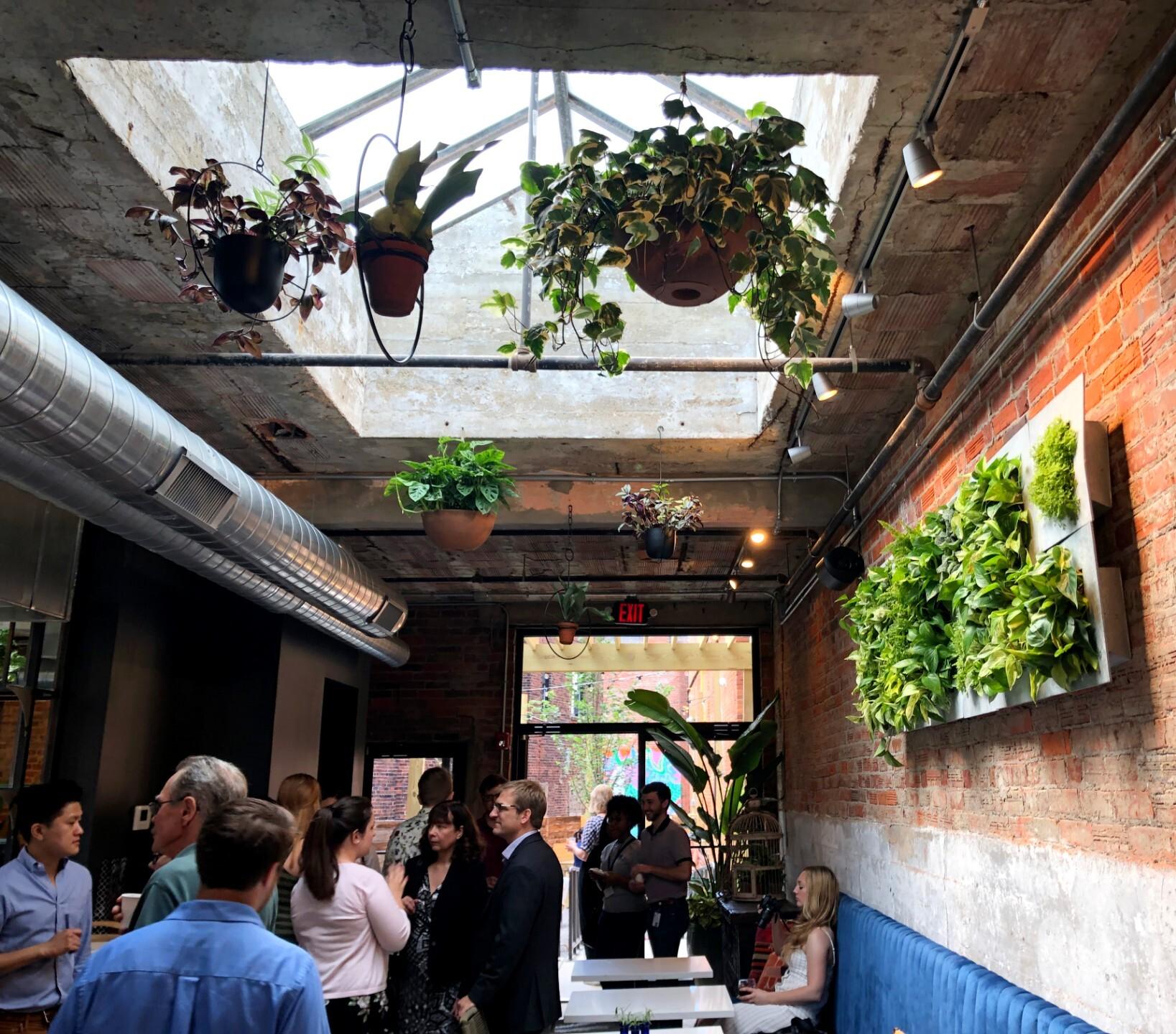 Comfort_Station_Interior_Plants.jpg