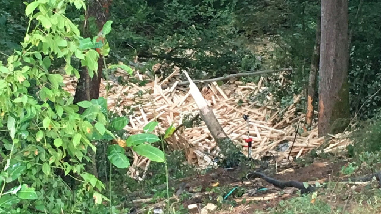 Semi Crashes Into Woods, Spills Lumber Near I-24