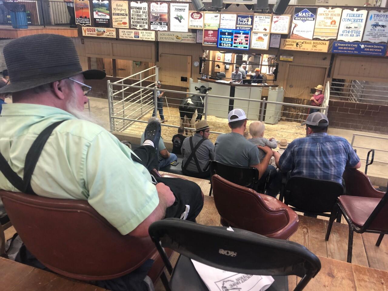 dairy farm closes 2