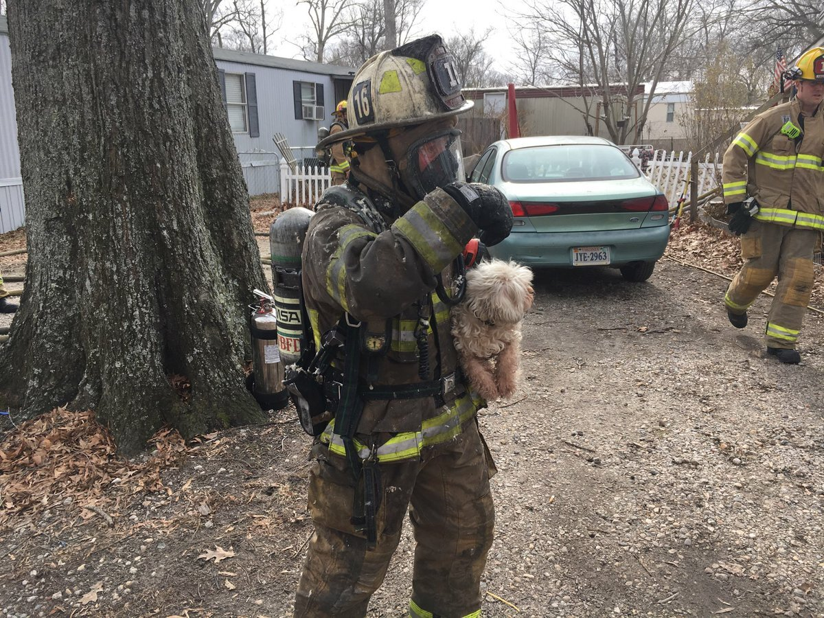 Photos: Firefighters and community members rescue multiple pets during a trailer park fire in VirginiaBeach