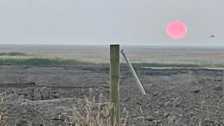The Red Sun.jpg