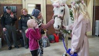 unicorn surprise.jpeg