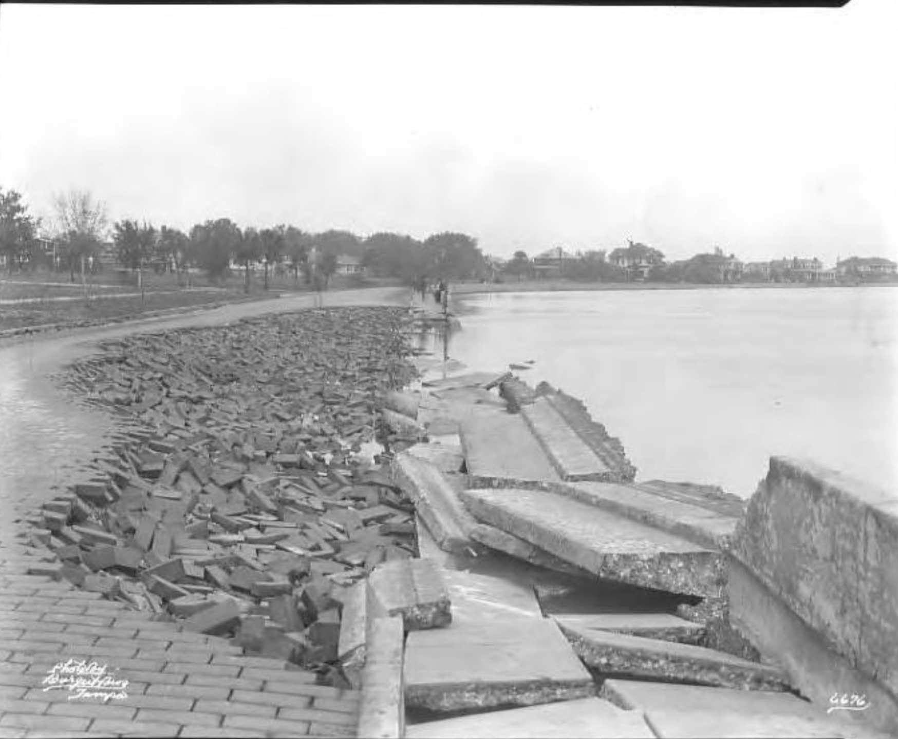 Bayshore Boulevard brick pavement and sidewalk damaged by hurricane.png